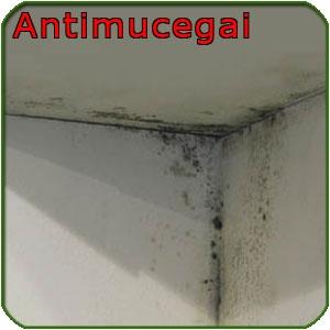 im_101_0_solutie-antimucegai